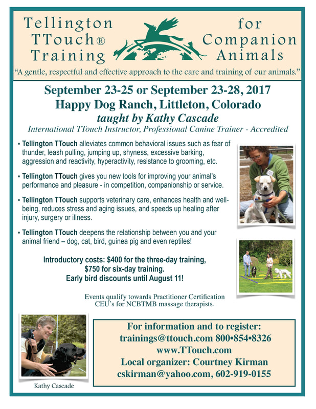 September 23 28 Ttouch For Companion Animals With Kathy Cascade